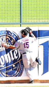 Time Tebow, crashes into padded fence. Wire mesh infill panel is present.