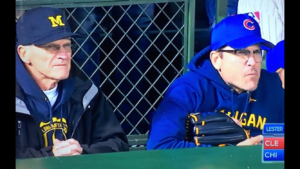 A Wire Mesh Infill Panel spotted at Wrigley Field, during World Series.