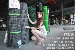 Model with Wire Mesh